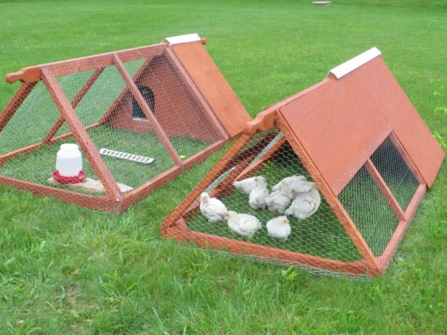 An Emergent Agrarian New Improved Chicken Tractor